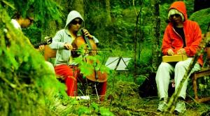 Forest gig 2008